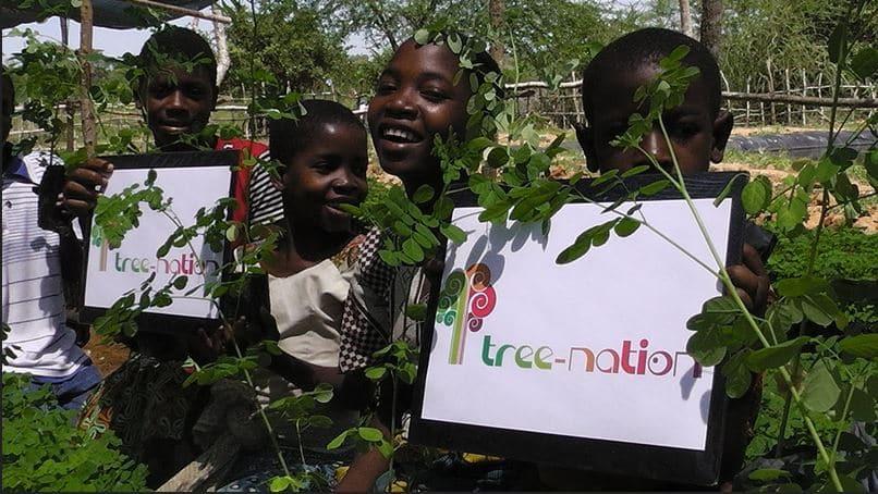 Con Albeisa a Natale adotta un albero e aiuta a salvare una foresta del Kenia