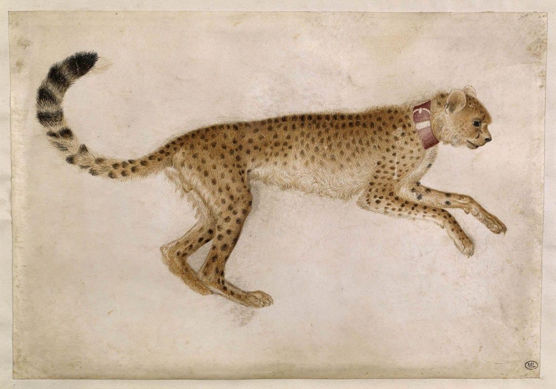 La mostra da non perdere: Arte lombarda dai Visconti agli Sforza – Milano Palazzo Reale