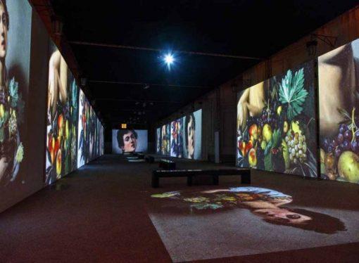 Caravaggio Experience a Venaria