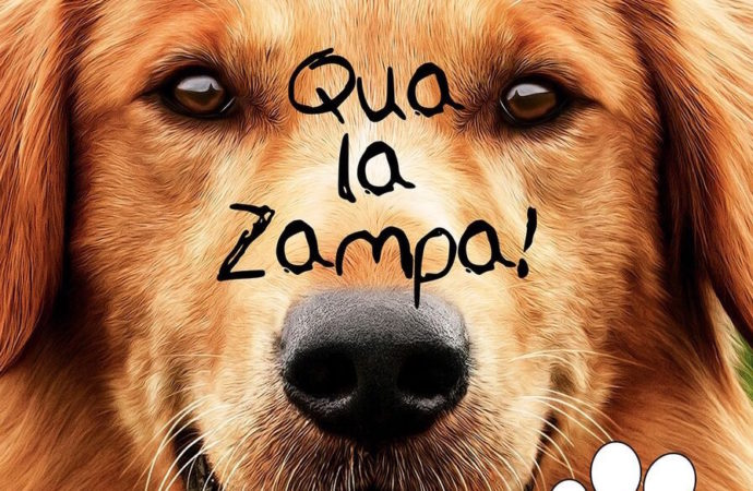 L'emozionante film Qua la zampa disponibile in dvd e blu-ray