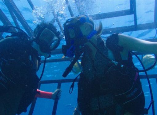 Film 47 metri, pura adrenalina tra gli squali del Mar dei Caraibi