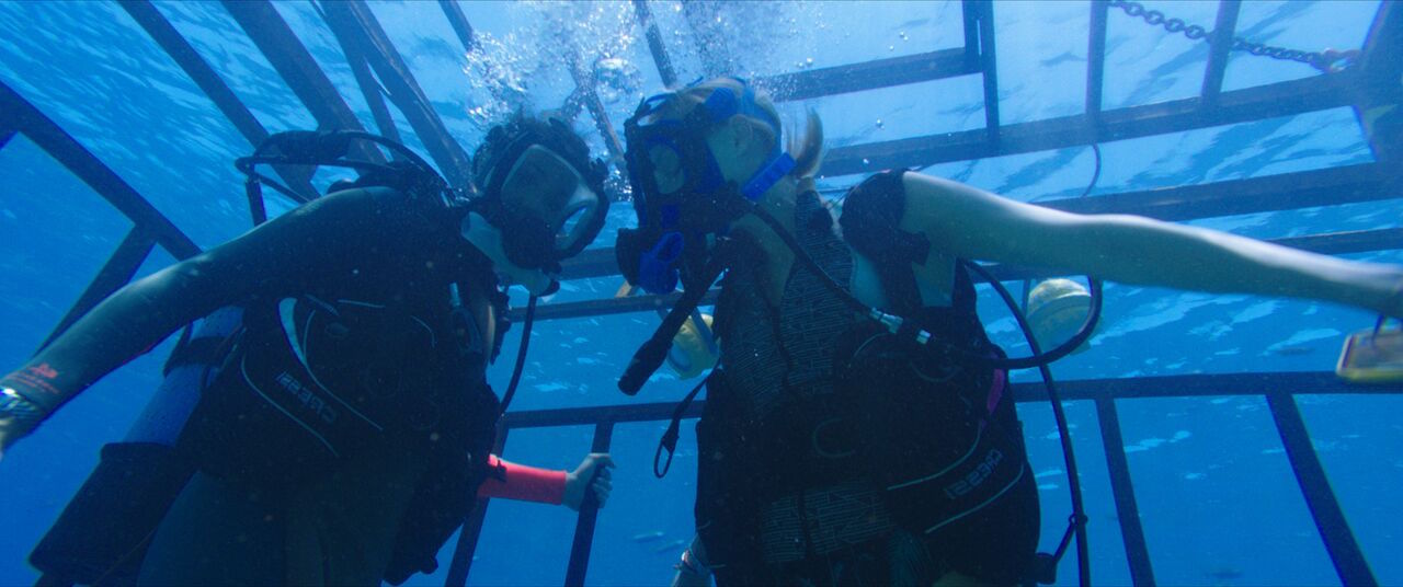 Il film 47 metri, pura adrenalina