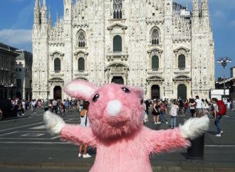 """Nelle piazze italiane """"circola"""" il super  Coniglio Rosa simbolo di TALLY WEiJL!"""