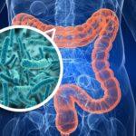 E' arrivata la 'clinica dei microbi' per aiutare le persone a stare meglio