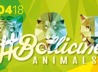21/04 #Bollicine Animals @ Bobadilla – Dalmine (BG) – al mixer NerveStrain