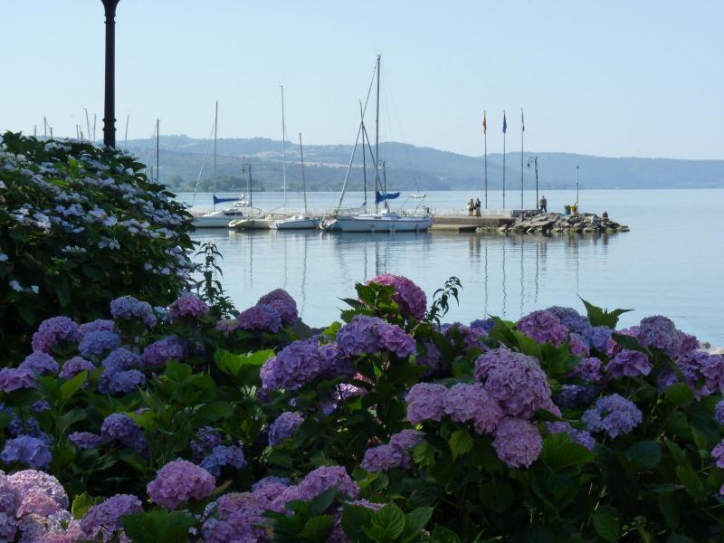 15 - 17 Giugno Festa delle Ortensie sul lago di Bolsena