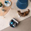 Rowenta lancia la sua prima gamma di robot Smart Force
