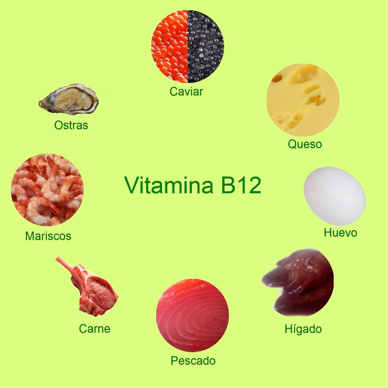 Alla ricerca della Vitamina B12: ecco dove trovare la 'vitamina buona' che ci aiuta a invecchiare bene