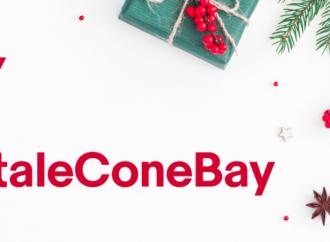 Osservatorio Natale 2018 TNS & eBay