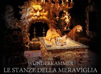 Il  documentarioWunderkammeral cinema solo il4,5e6 marzo