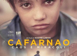 Cafarnao, un film commovente che rispecchia una realtà drammatica
