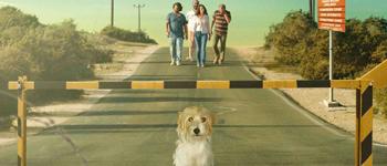 Torna a casa, Jimi!, il film che affronta con leggerezza il grave problema della divisione di Cipro