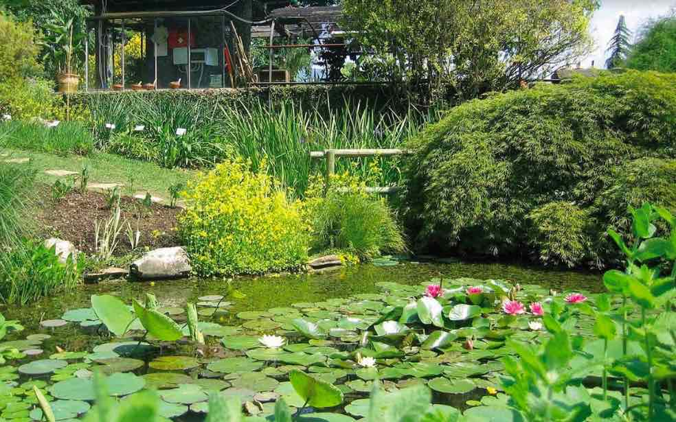 Orti Botanici della Lombardia: una vera full immersion nella natura... stando in città!
