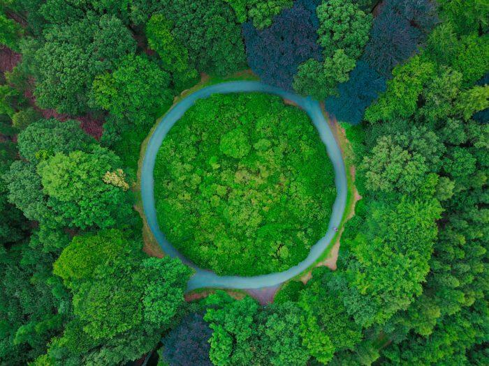 """Ricerca """"Green Conversation"""" sulle start up dedicate alla sostenibilità e alla salvaguardia del pianeta"""