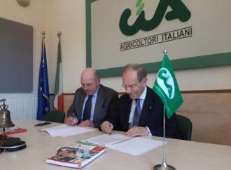 LILT Lega Italiana per la lotta contro i tumori e Cia-Agricoltori Italiani insieme a sostegno della prevenzione