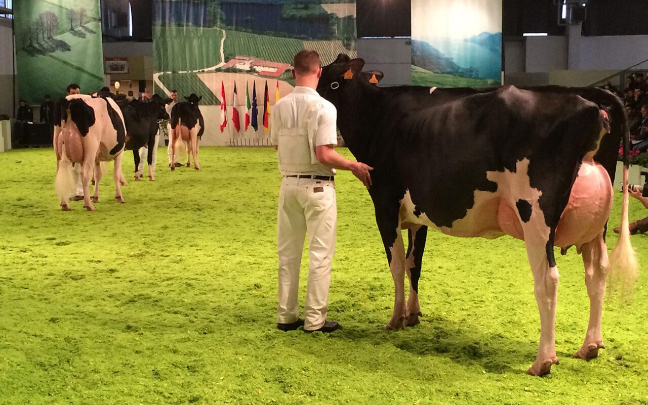 Fiera Internazionale del Bovino da latte dal 3 al 5 dicembre 2020