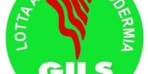 Il Gils lancia un bando per un giovane ricercatore
