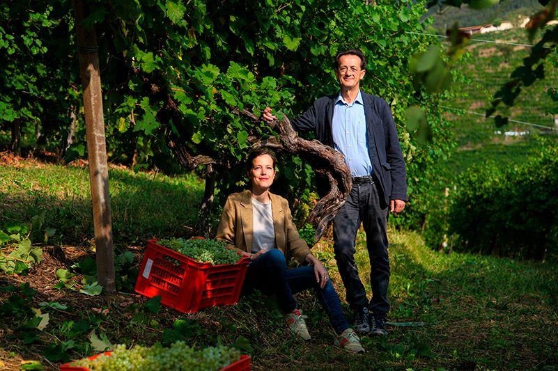 Ruggeri, azienda vinicola che punta alla longevità