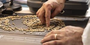 Caffè Borbone chiude in crescita il primo trimestre del 2021