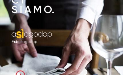 Nasce la nuova filiera virtuosa di Asiago DOP, con la collaborazione di JRE e Gambero Rosso
